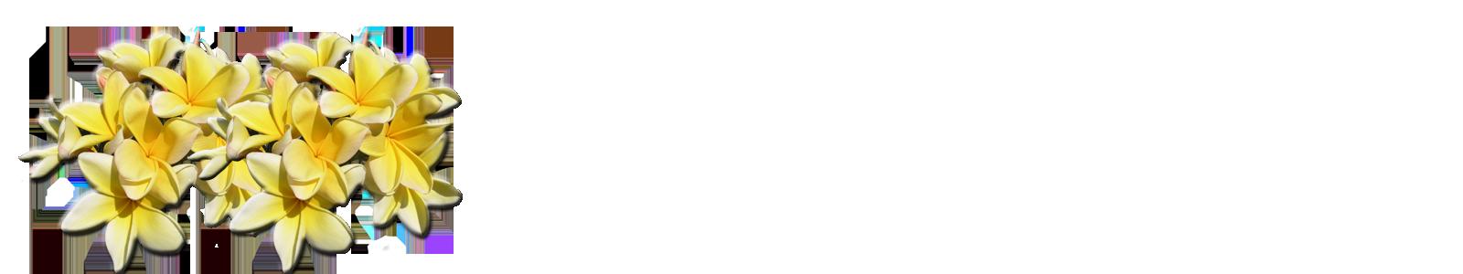 aztec22