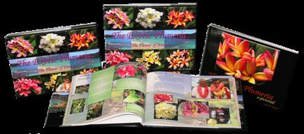 exotic plumeria book