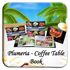 plumeria coffe table book