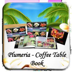 plumeria coffe table book