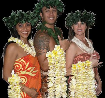 Plumeria Leis & Flowers